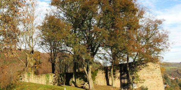 Ruine Neuwolfstein