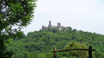 Burg Braunfels (Juni 2017)
