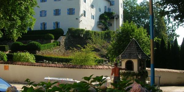 Schloss Drasing mit Bildstock - Westansicht