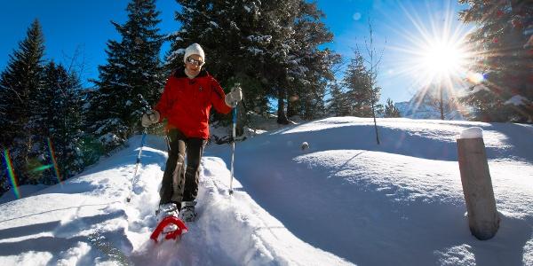 Schneeschuhlaufen rund um den Arnisee