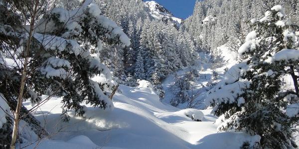 Verschneite Landschaft auf Arni oberhalb von Amsteg