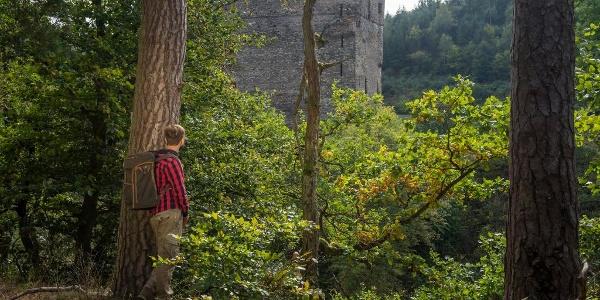 Blick auf die Burgruine Balduinseck