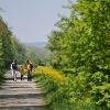 Auf gut ausgebauten Wegen folgt die Wanderung zwischen Frauenfeld und Wil oft der Murg.
