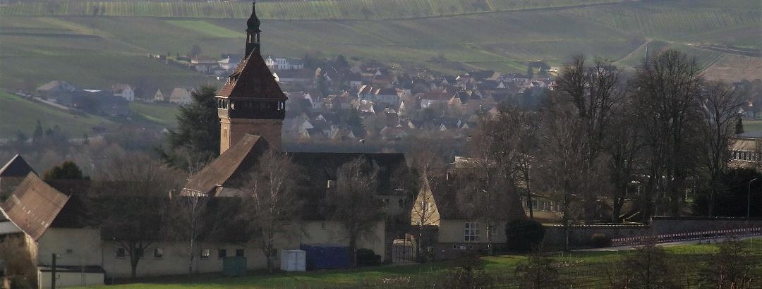 Blick Richtung Geilweilerhof