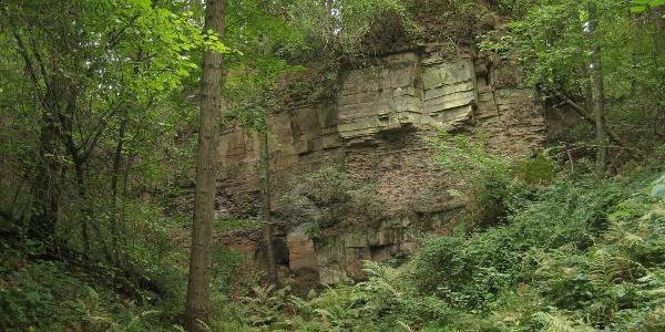 Ehemaliger Steinbruch am Dunzelloch