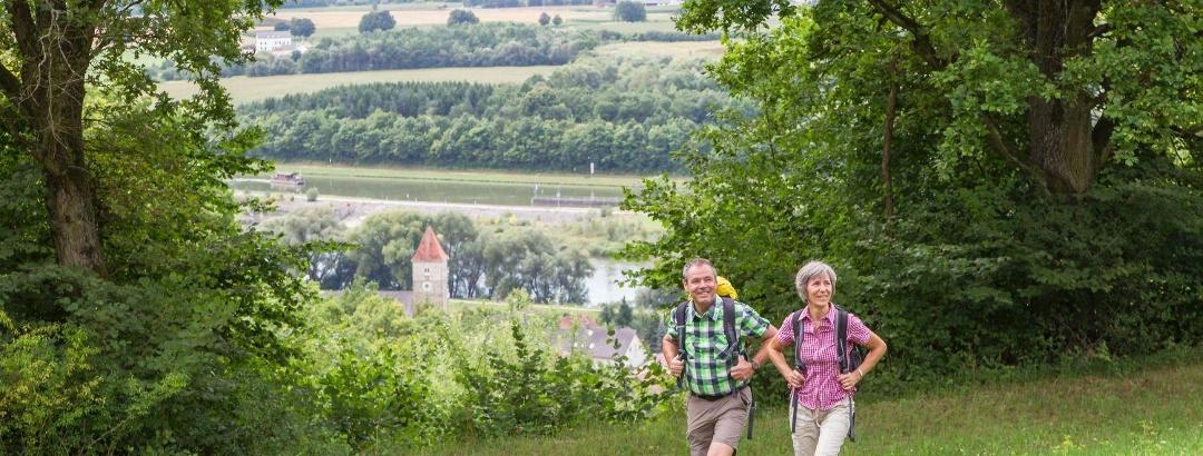 Oberndorfer Hänge bei Bad Abbach
