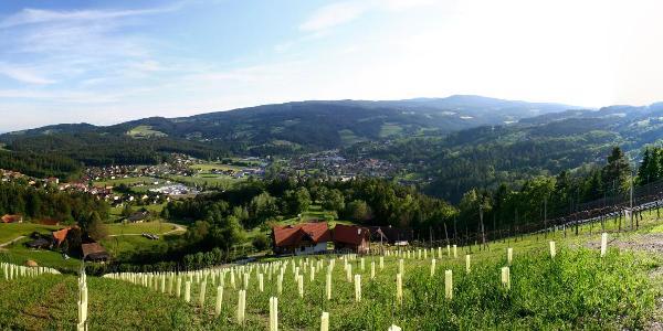Bild vom Reinischkogel von Ligist aus