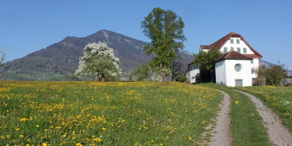 Brünnihof Weggis