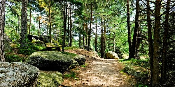 Naturpark Nordwald