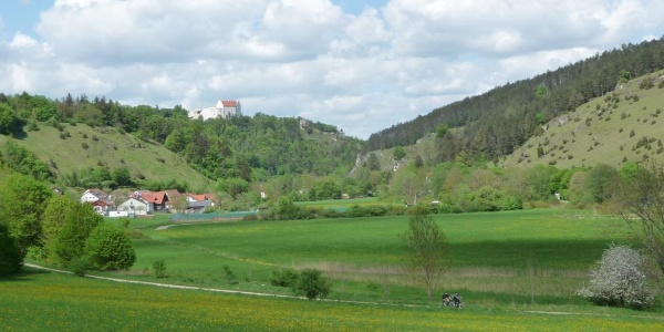 Blick auf die Rosenburg über Riedenburg