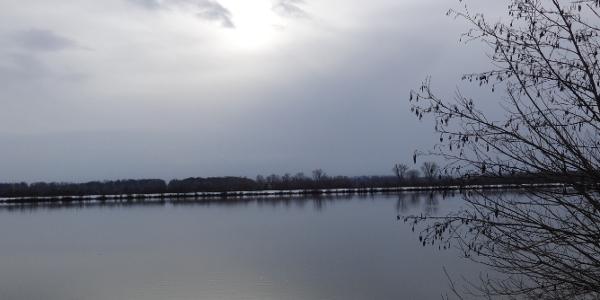Sonne und die Donau