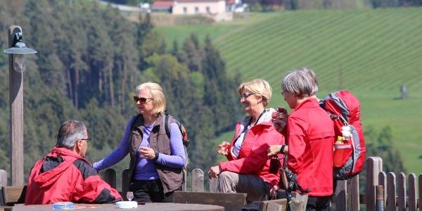 Wandern durch die Weingärten