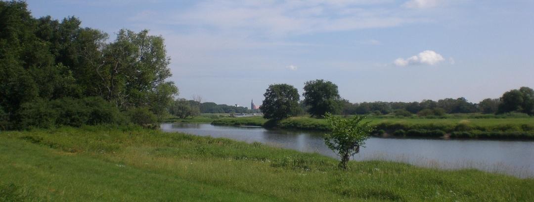 Landschaft am Wanderweg