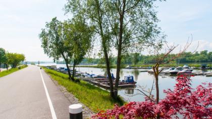 Mittagspause in Au an der Donau