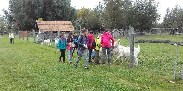 A Festetics Imre Állatpark