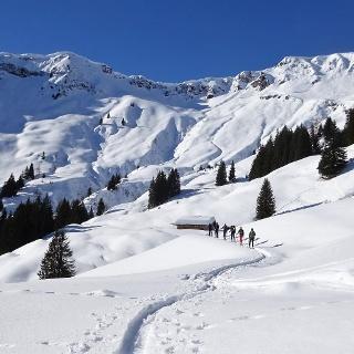 ... ab 1400 m wieder in südlicher Richtung zur Jetzbachalm (1523 m). Das mächtige Kar unter dem Kamm der Schwalbenwand öffnet sich.