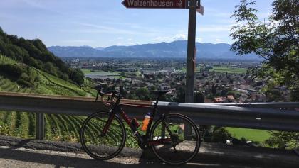 Das Schweizer Rheintal