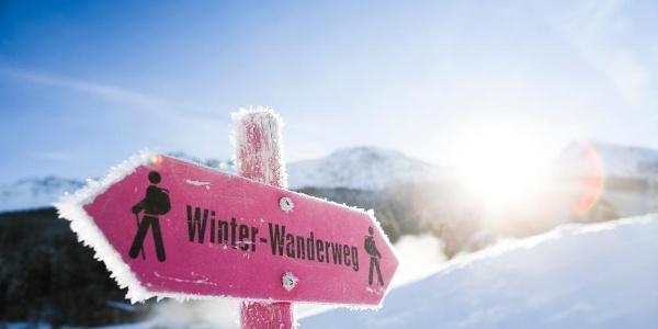 Wegweiser Winterwanderweg