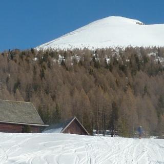 Die Prodingerhütte, dahinter der lichte Hochwald und dann die Gipfelflanke.