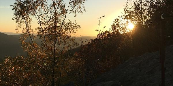 Ausblick vom Rinsleyfelsen