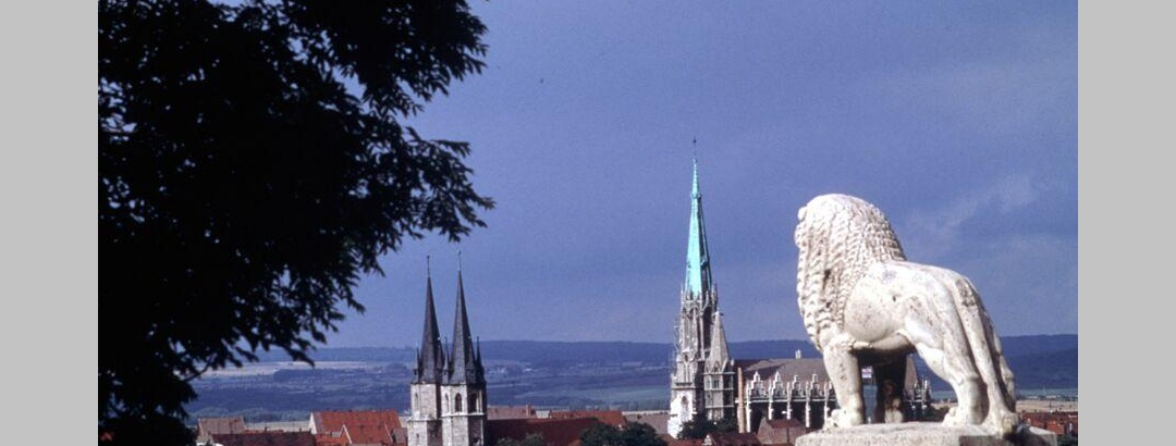 Blick auf Mühlhausen