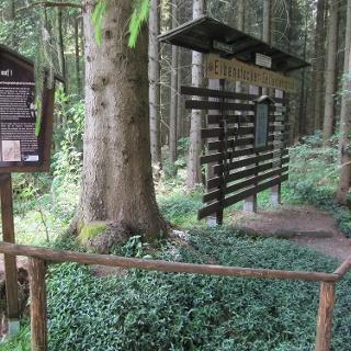 am Bergbaulehrpfad Eibenstock