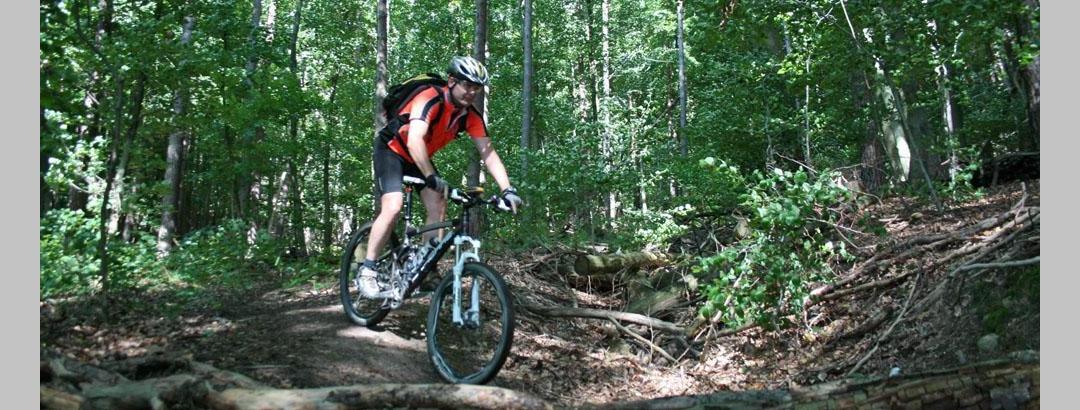 Breuberg Mountainbike-Strecke