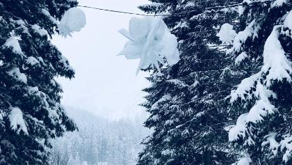 Neve a braies
