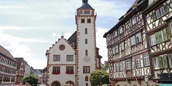 Mosbach Rathaus und Palmsches Haus