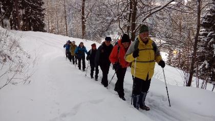 20 min nach Wanderbeginn, am Weg zum 1. Berg, dem Dragelsberg