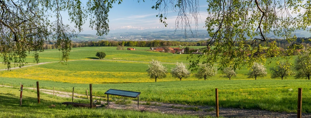 Der Aussichtspunkt bei Hinterhomburg: einer der schönsten im Thurgau.