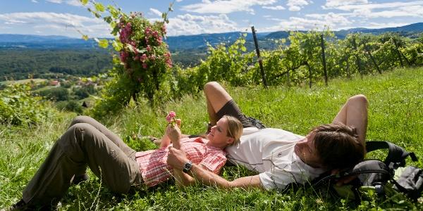 Rast im Weingarten bei Stainz