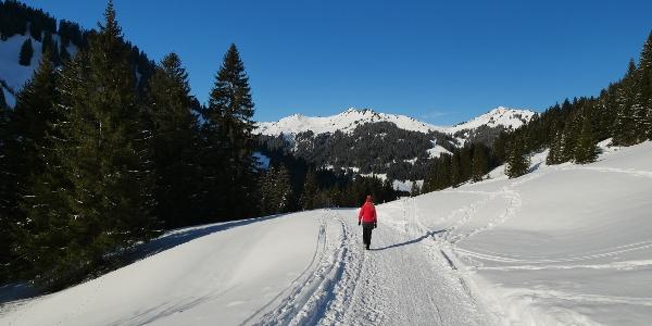 Auf dem Weg zur Bärgunthütte