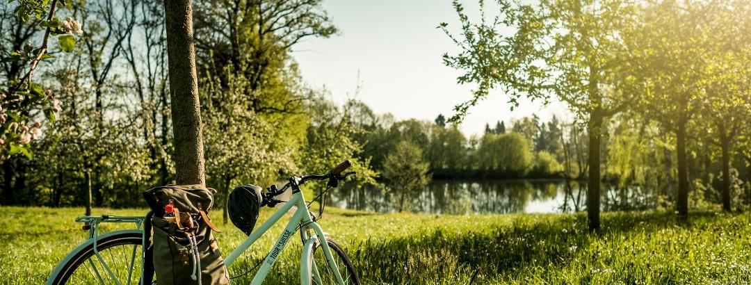 Während der Obstbaumblüte zeigt sich der Thurgau von der schönsten Seite.