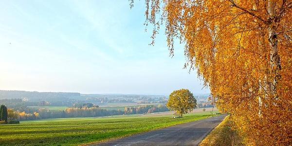 Herbststimmung am Goldsteig