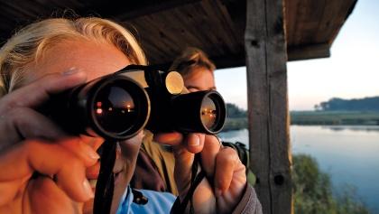 Naturbeobachtung an der Peene