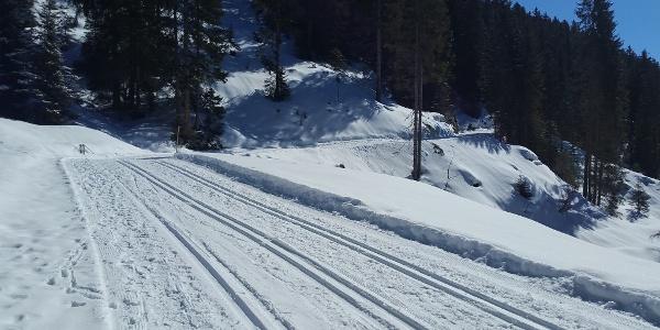 Panoramaloipe Kirstberg
