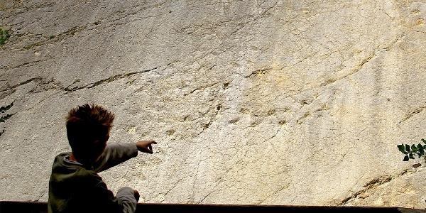 Die Dinosaurierspuren im Steinbruch Lommiswil.