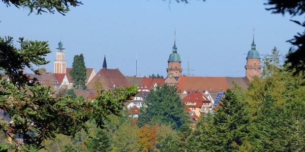 Ausblick von der Schöneck-Hütte auf Rathaus und Stadtkirche Freudenstadt