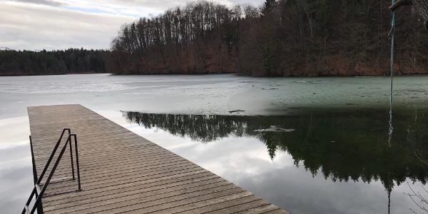 Langbürgner See (März 2018)