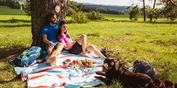 Picknick am Traufgang Zollernburg-Panorama