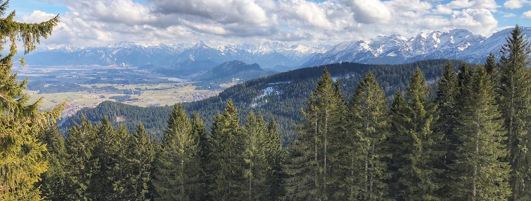 Blick in die Ostallgäuer Alpen