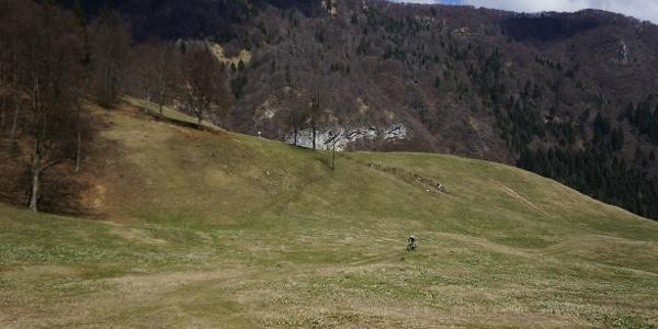 Die Wiesen rund um die Malga Grassi