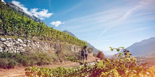 Wanderer auf dem Weinweg bei Fully