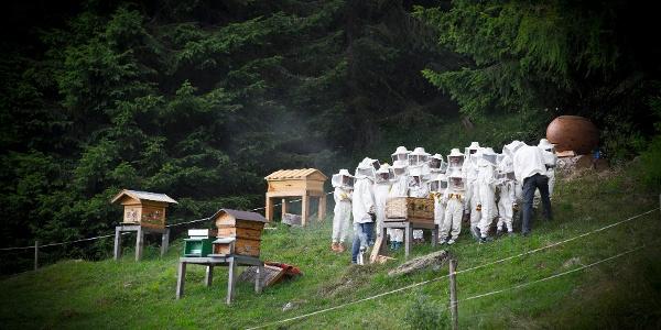 Das Bienen-Dorf