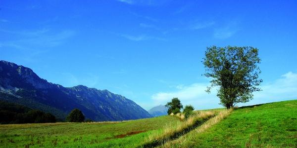 Paesaggio in Val di Gresta - località Bordala