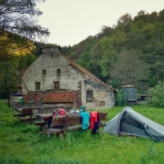 """Hilster Mühle """"wild"""" kamp"""