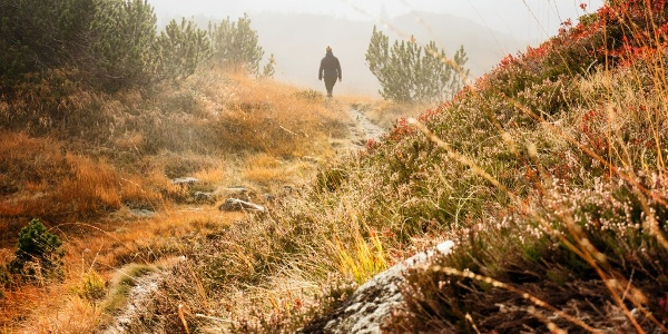Auf dem Weg durch das Europaschutzgebiet Wiegensee Richtung Verbellaalpe