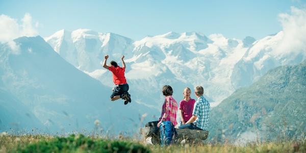 Paradisrunde: Auf dieser vergnüglichen Runde mit wunderschöner Aussicht auf das Bernina-Massiv sieht man mit etwas Glück auch den einen oder anderen Steinbock.