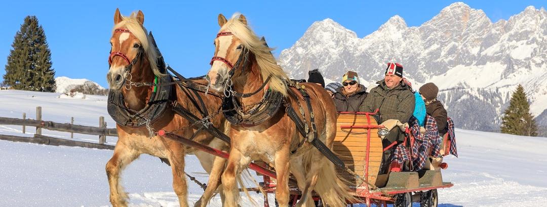 Horse drawn sleigh ride in the Austrian Dachstein-Region